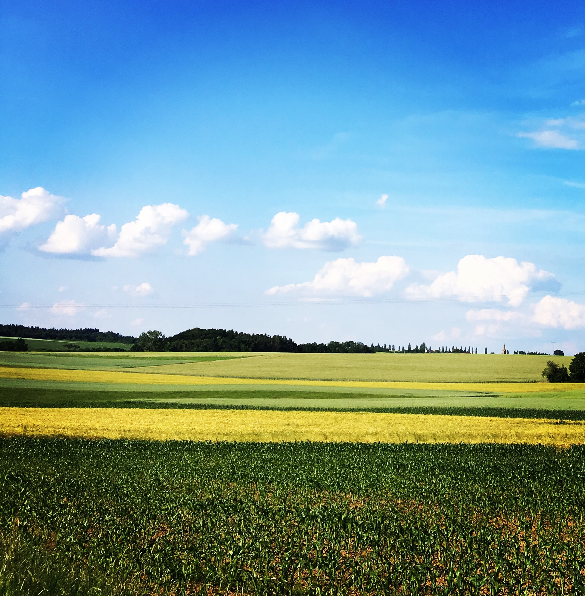 tolle landschaft